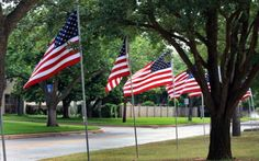 Happy Flag Day - 2013
