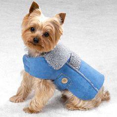 Blue Suede Dog Coat Jacket