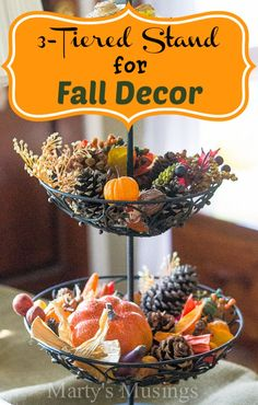3-Tiered Stand for Fall Decor Perfect ideas to collect the kids fall pine cones & leaves that they bring home. Wonderful way to display and keep their collection in one place.