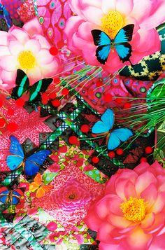 蜷川実花の作品 キレイ