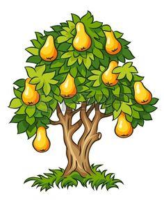Illustration about Pear tree with ripe fruits vector illustration isolated on white background. Illustration of branch, pear, leaves - 25919414 Projects For Kids, Diy For Kids, Birthday Tree, Candy Logo, Tree Clipart, Fruit Vector, Fruit Illustration, Forest Theme, Pear Trees