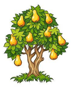 poirier avec une illustration de fruits m rs isol sur fond blanc Banque d'images