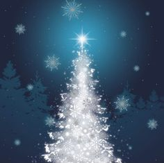 Send season greetings and help out a charity by buying one of these great charity Christmas cards. Frosted Christmas Tree, Charity Christmas Cards, Wallpaper Ideas, Seasons, Blog, Outdoor, Xmas, Events, Outdoors