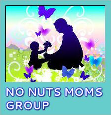 Playgroup for Kids, Support Group for Moms: No Nuts Moms Group!
