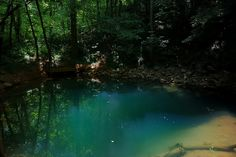 A blue pool near Lost River Cave in Bowling Green, KY, USA..