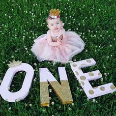 Baby Girl Birthday Photoshoot Ideas 16 Ideas For 2019 1st Birthday Photoshoot, Baby Girl 1st Birthday, First Birthday Parties, Cake Birthday, Princess First Birthday, Princess 1st Birthdays, 1year Old Birthday Party, Princess Party, First Birthday Crafts