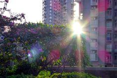 Apartment gardens Xixiang Shenzhen China