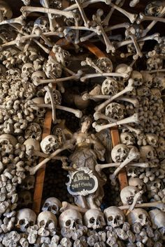 These bones line the walls & altar of a chapel & are made from thousands of human bones.The Chapel is in Poland.The bones are from the & the as well as cholera victims. Real Human Skull, Human Skeleton, Monuments, Thirty Years' War, Scary Places, Skull Tattoos, Skull And Bones, Memento Mori, Skull Art