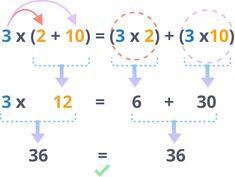 Distributive Property of Multiplication - 3rd Grade Math - Class Ace Distributive Property Of Multiplication, Associative Property, Properties Of Multiplication, Multiplication Problems, 3rd Grade Math, Math Class, Writing Algebraic Expressions, Adding Fractions, Homeschool Math
