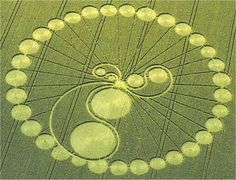 Reality within the crop circle world is unfolding ... |Chilbolton Crop Circle Explanation