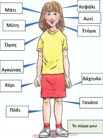 anatomy body parts game – Anatomy facts Anatomy Body Parts, Human Anatomy Chart, French Teaching Resources, English Activities, Nouns Exercises, French Body Parts, Learn Greek, Math Magic, French Classroom
