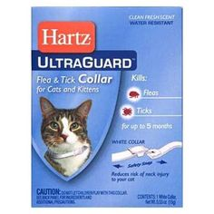Hartz Ultra Guard Flea and Tick Collar For Cats and Kittens Fresh Scent * Read more reviews of the product by visiting the link on the image.