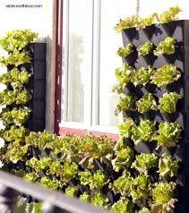 Resultado de imagen para jardines pequeños en casa