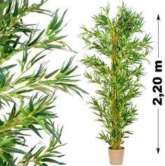 Vásárlás: Tuin Műnövény - Bambusz 220 cm Művirág árak összehasonlítása, Műnövény Bambusz 220 cm boltok Herbs, Plants, Products, Bamboo, Herb, Plant, Gadget, Planets, Medicinal Plants