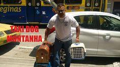 TAXI DOG MONTANHA TRANSPORTE DE ANIMAIS NO RIO DE JANEIRO: DE VILA SÃO LUIZ-Caxias para TIJUCA-Rio de Janeiro...