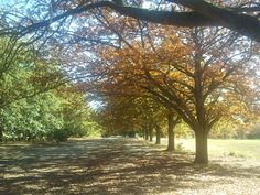 Victoria Park, Ballarat..