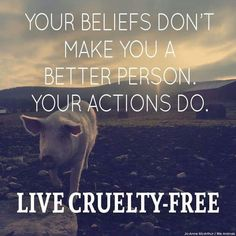 'Your beliefs don't make you a better person. Your actions do.' please do not finance cruelty, go #vegan