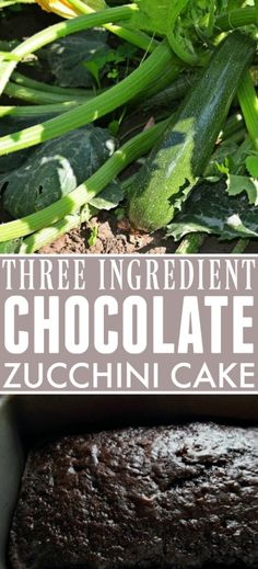 This quick and easy recipe to make a delicious chocolate zucchini cake with cake mix will become an instant summertime classic in your home! Easy Zucchini Bread, Zucchini Side Dishes, Easy Zucchini Recipes, Chocolate Zucchini Bread, Zucchini Cake, Chocolate Chip Banana Bread, Recipe Zucchini, Strawberry Salsa, Strawberry Desserts