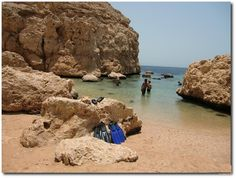 $40 Ras Mohammed Excursions From Sharm Snorkeling Tours in Red Sea #Sharm #Sinai