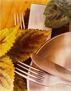Jan Groover, Untitled No. 8870 (Kitchen Still Life), c. 1978-1979
