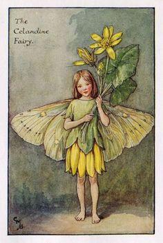 Stinkende gouwe Flower Fairy Vintage Print, c.1927 Cicely Mary Barker-boekillustratie plaat