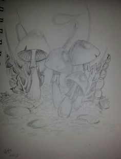 Pencil drawing of mushrooms courtesy of Linda Ravenscroft's book How to draw fantasy and faeries.