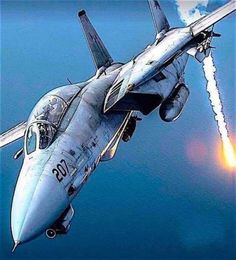 Raiden Fighter, Air Fighter, Fighter Jets, Military Jets, Military Aircraft, Luftwaffe, Avion Jet, F14 Tomcat, Marine Corps