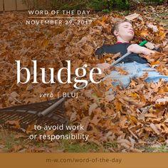 Today's #wordoftheday is 'bludge' . #language #merriamwebster #dictionary