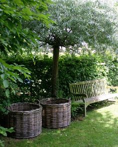 37 Beautiful Garden Pictures For You Get Basic Engineering, Home Design & Home Decor. Beautiful Garden Pictures For YouGreen colours are great for human eyes and offer m Love Garden, Dream Garden, Garden Pots, Home And Garden, Garden Hedges, Garden Seat, Garden Cottage, Farmhouse Garden, Garden Pictures