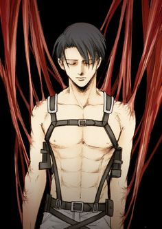 LEVI TITAN SHIFTER!!!!! I wish... he would be like a 4 meter class or something...