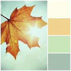 Fall colors - Color Palette - Paint Inspiration- Paint Colors- Paint Palette- Color- Design Inspiration