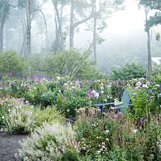 As summer waves goodbye, step into a romantic September garden in New York's Catskill Mountains that bursts with late-season splendor.