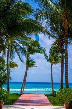 Отпуск, наполненный роскошью, в одном из самых загадочных мест побережья Карибского моря.   http://rivieramaya.grandvelas.com/russian/