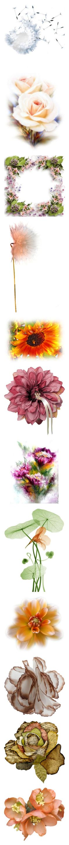 """""""FLOWERS - Anything Goes"""" by for-the-art-of-fashion ❤ liked on Polyvore featuring effects, flowers, backgrounds, filler, roses, tubes, frames, borders, picture frame and dandelion"""