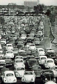 Traffic jam! #vintage #volkswagens