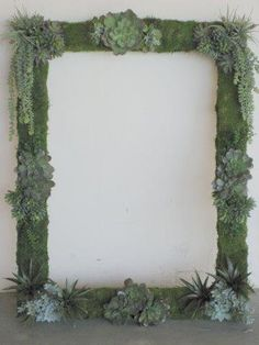 moss / succulent frame, designed by Sandy Yorks Succulent Frame, Succulent Ideas, Succulent Planters, Party Photo Frame, Cactus Pictures, Air Plant Display, Moss Art, Modern Wreath, Exotic Plants