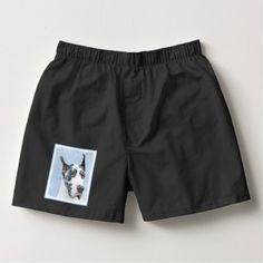 #Great Dane (Harlequin) Boxers - #great #dane #puppy #danes #dog #dogs #pet #pets #cute