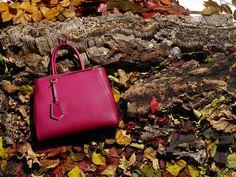 8b66ea7901 Fall Winter 2013-14 2Jours bags Fendi 2jours