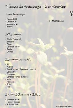 Temps de trempage (germination)