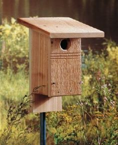 Blue Bird House: Interested in attracting bluebirds to nest in your yard? These DIY birdhouse plans meet their specific nesting requirements to give you the best chance. Bird Feeder Plans, Bird House Feeder, Bird Feeders, Bluebird House Plans, Bluebird Houses, Bird House Kits, Bird Houses Diy, Bird Aviary, Bird Boxes