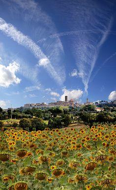Volterra, Toscana, Italia by Batistini