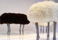 Still obsessed with sheep stools!