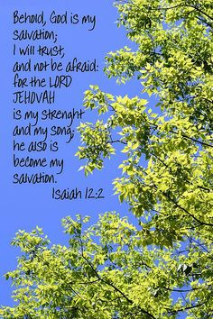Lord Jehovah 2 by Sheri McLeroy Isaiah 12 2, Book Of Isaiah, Scripture Canvas, Faith Scripture, Christian Greeting Cards, Love Scriptures, Walk In The Light, Jesus Calling, Printable Bible Verses
