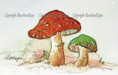 Mushrooms Toadstools Watercolor Painting Botanical RoseAnn Hayes Mushroom Crafts, Forest Plants, Ready To Pop, Flower Doodles, Nature Journal, Garden Gifts, Custom Leather, Zentangle, Watercolor Paintings