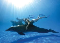 Website with things to do in Puerto Vallarta