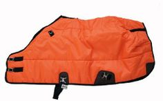 420D Medium Weight Winter Horse Blanket Tangerine by AJ. $55.00. 420 denier breathable water resistant outer shell with taped center seam. Double front buckles. Adjustable belly strap and leg straps. Hood rings. 300g poly fill insulation. Medium weight winter horse stable blanket. Made with 420 denier durable wind proof and water resistant poly nylon, 300 poly fill, smooth black lining. To Measure Your Horse: Measure from the center of your horse's chest, along the...