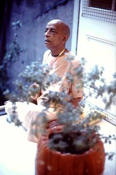"""""""The process of chanting the Hare krishna mahamantra with a vow before the Tulasi plant has such strong spiritual potency, that simply by doing this one can become spiritually strong."""" -C.C Antya 3.100p"""