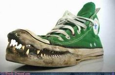 Crocodile Converse All Star Chuck Taylor High Tops Crazy Shoes, Me Too Shoes, Women's Shoes, Shoe Boots, Weird Shoes, Converse Shoes, Star Shoes, Prom Shoes, Fall Shoes