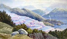 Pink and blue terraces, New Zealand Terraces, Archaeology, New Zealand, Places To Visit, Mountains, Nature, Pink, Travel, Image