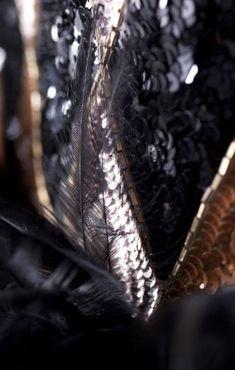 Détails d une robe brodée réalisée pour Zizi Jeammaire en 1968.  Photographie de Sophie Carre.  Document Musée Yves Saint Laurent.